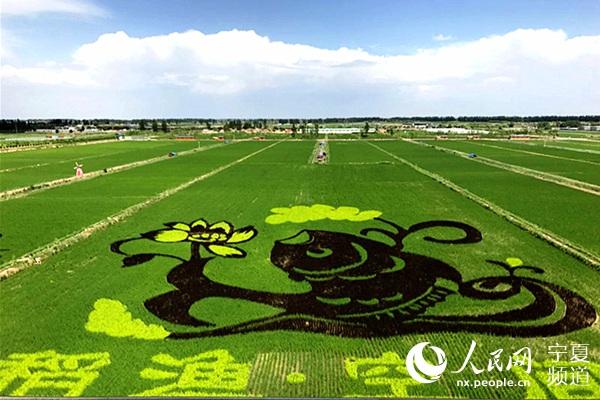 宁夏四十里店村:土地转起来,企业引进来,农户富起来