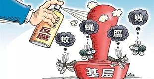 村级异地巡察 严防基层腐败