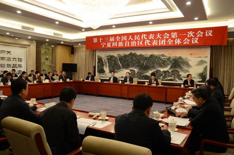 宁夏代表团举行全体会议 审查计划报告和预算报告