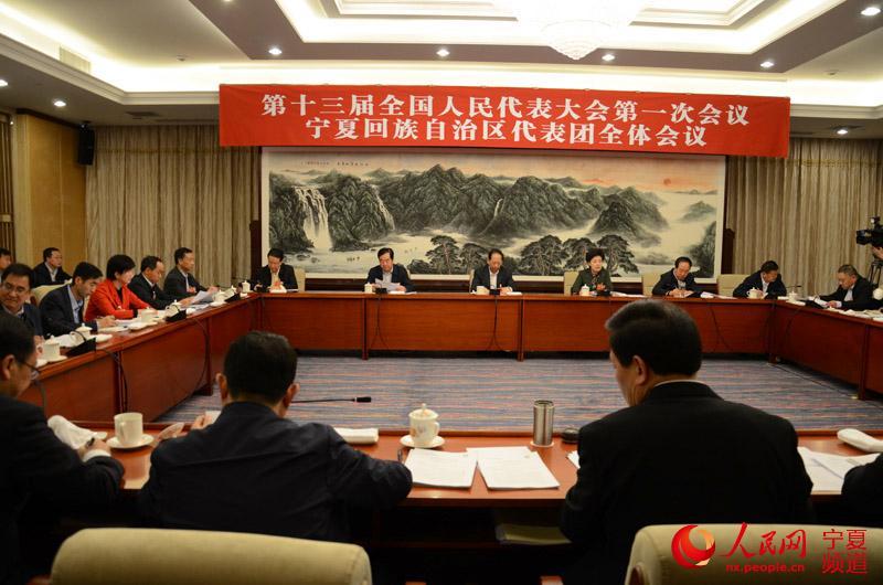 宁夏代表团举行全体会议 审议两高工作报告