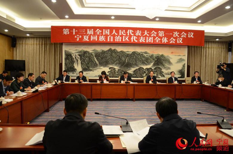 宁夏代表团举行会议 审议全国人大常委会工作报告