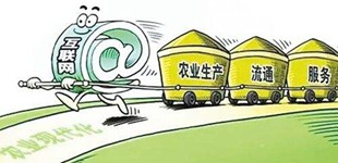 中国农科院推出蔬菜绿色发展技术集成模式