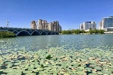 """艾伊河:银川城中的""""蓝丝带"""""""