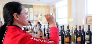 宁夏红寺堡西川首届葡萄采摘旅游文化节开幕