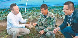 吉林省白山市发展特色种植产业