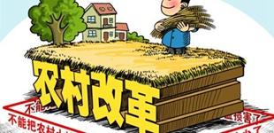 四十年农业农村改革发展的成就经验