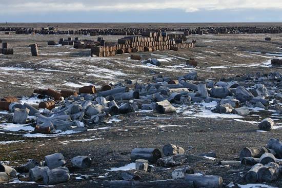北极因为近年了人类活动的频繁,正在遭到严重的破坏,原本美丽的土地上,堆满了废弃的油桶。北极的其他生物,在人类留下的废物垃圾间艰难徘徊 当你到达俄罗斯的北极海岸,首先映入你眼帘的是成吨的的垃圾和生锈的桶子。在北极区域,任何工业化的尝试总是伴随着可怕的污染。 弗兰格尔岛,也被称为北极熊的妇产科医院。大量的白猫头鹰,白鹅,黑雁,北极狐,海象以及其它动物在这里生存。 现在,该岛自然资源的安全由无人居住来保证。但是早些时候,由于政府想方设法寻求新领土,所以那时在岛上建造了交易站,驯鹿场,军用机场以及防空工事基地。